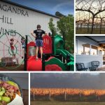 Tallangandra Hill Wines